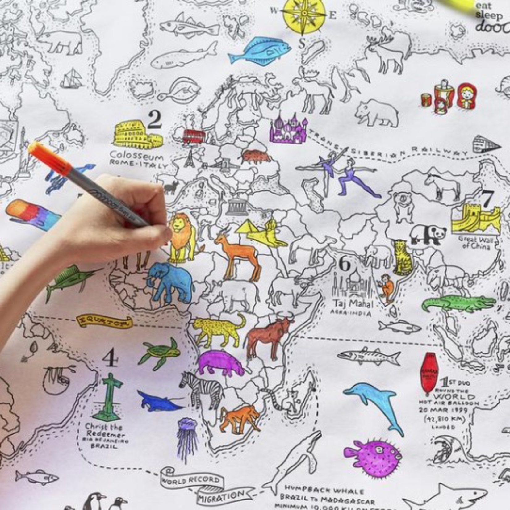 Eat Sleep Doodle Doodle world map colour in wrapping paper