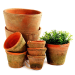 Grand Illusions Terracotta Mossed Redstone Plant Pot