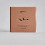 St. Eval St Eval Tealights x9 Fig Tree NEW