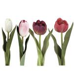 Grand Interiors Tulip h36cm