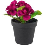 Grand Interiors Mini Primula in Pot Purple 13cmL
