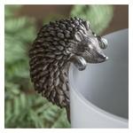 GD Single Edwin Hedgehog Pot Hanger