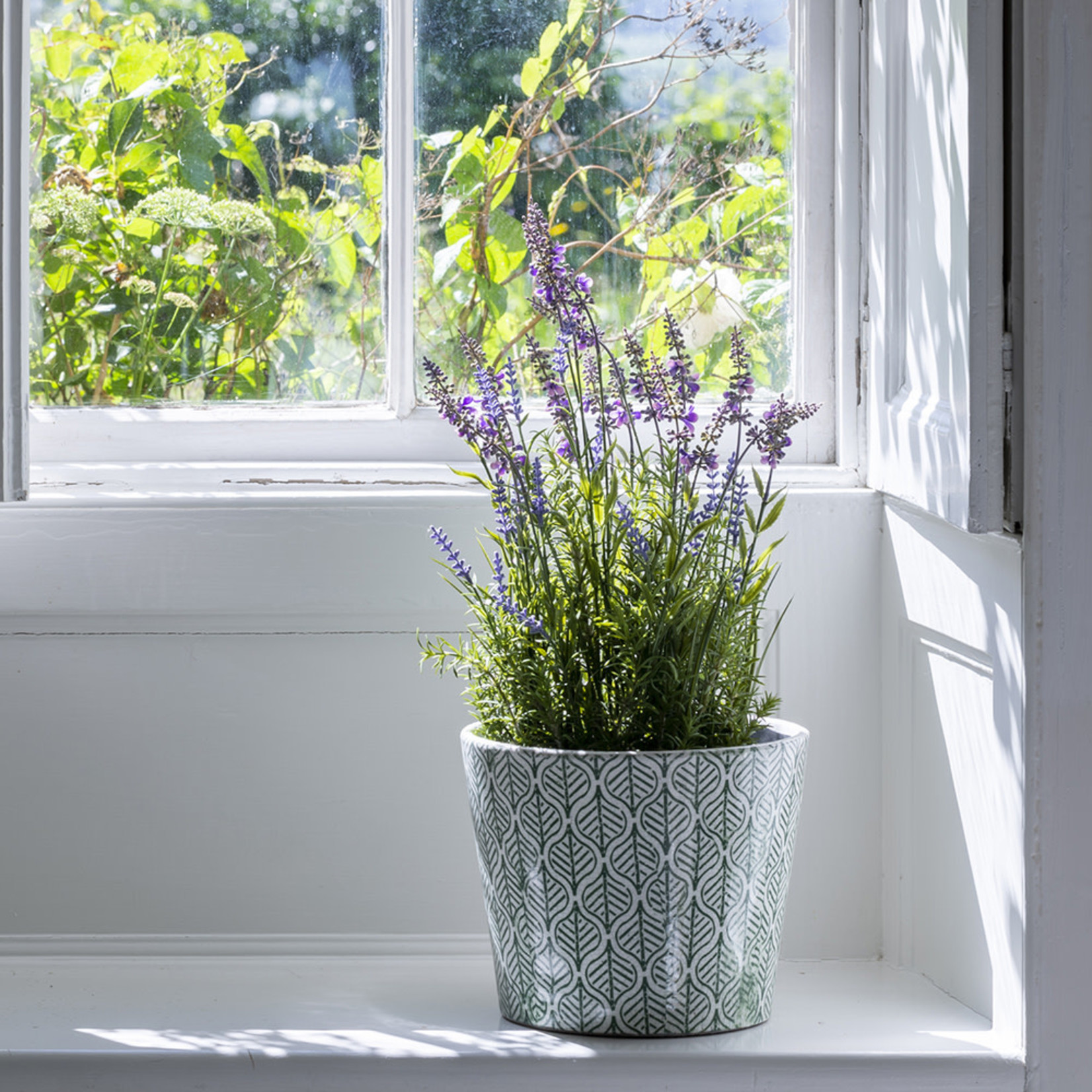 Grand Interiors English Lavender in Pot Large