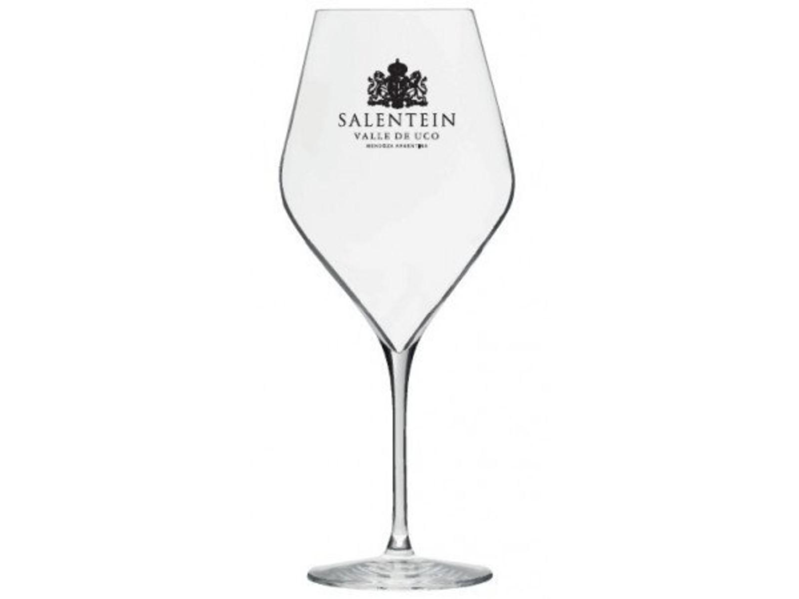 Bodegas Salentein Salentein Glazen 47 cl / Lehmann Absolus