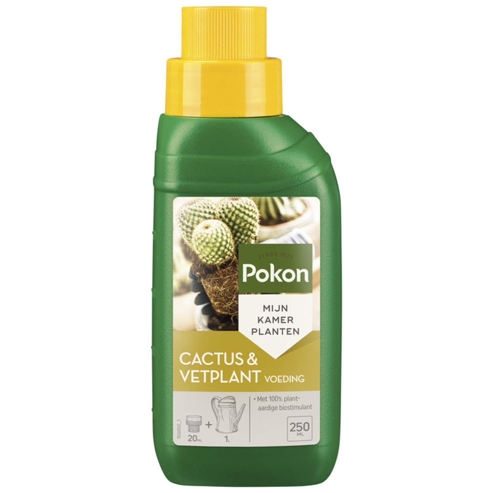 Pokon Cactus & vetplant 250ml