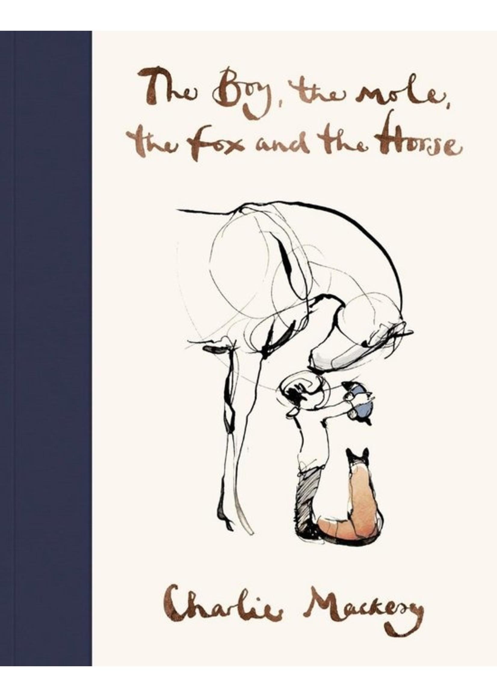 De jongen, de mol, de vos en het paard van Charlie Mackesy Arthur Japin