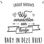 Minimou Minimou Tijdelijke tattoo 'We verwachten een kindje'