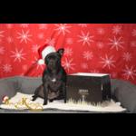 Verrassingspakket Kerst