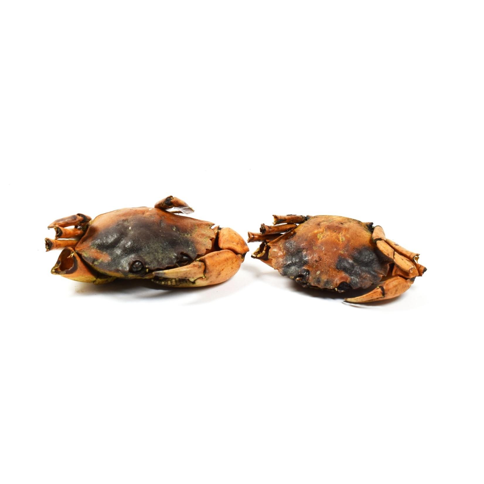 Krabbetjes