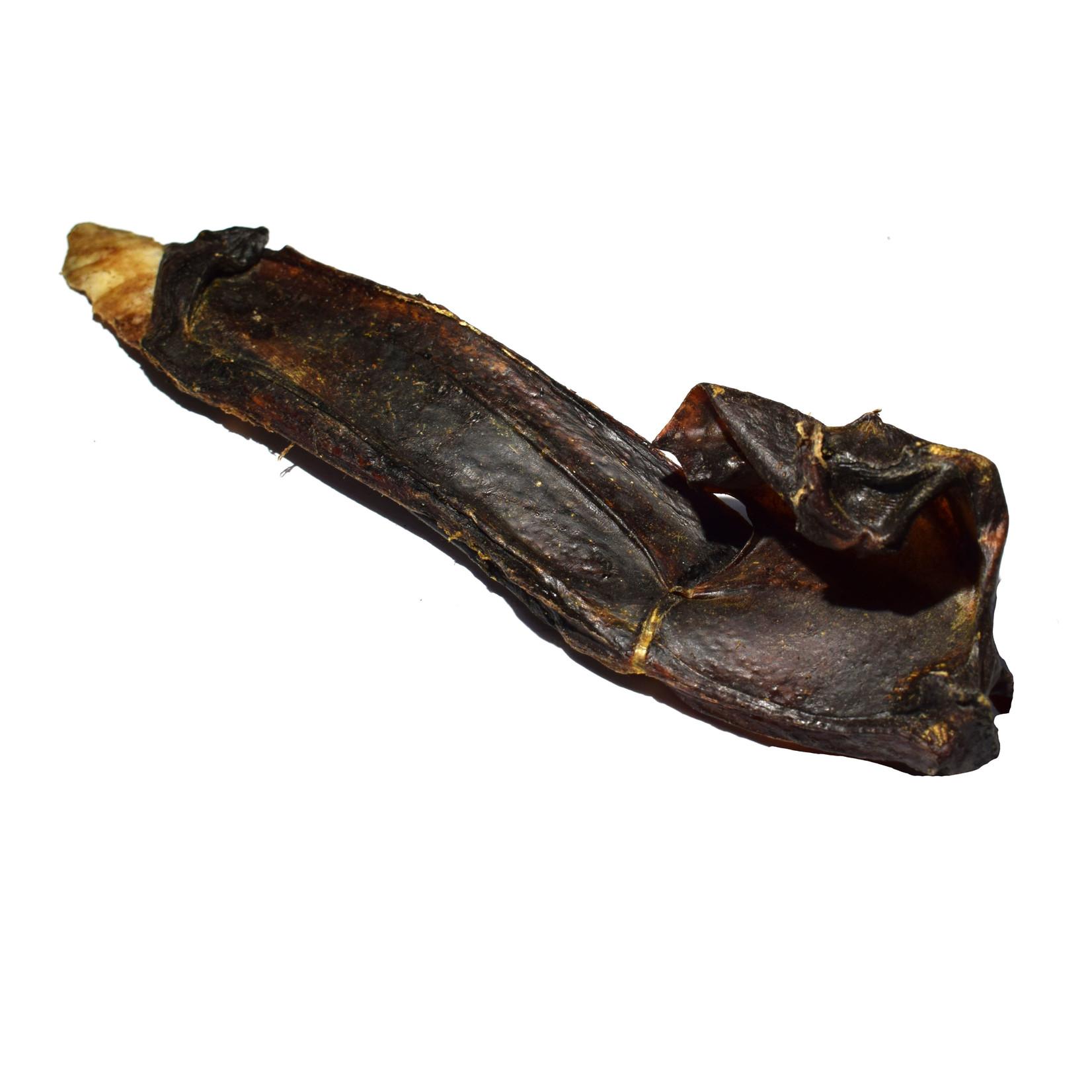 Paardenneus Kraakbeen