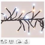 DecorativeLighting Clusterverlichting - 384 LED - 2-kleuren: wit + warm wit
