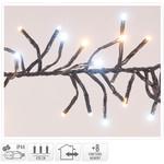 DecorativeLighting Clusterverlichting - 576 LED - 2-kleuren: wit + warm wit