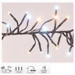 DecorativeLighting Clusterverlichting - 1512 LED - 2-kleuren: wit + warm wit