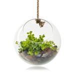 Jodeco Glass Eco bolvaas 'Eduard'