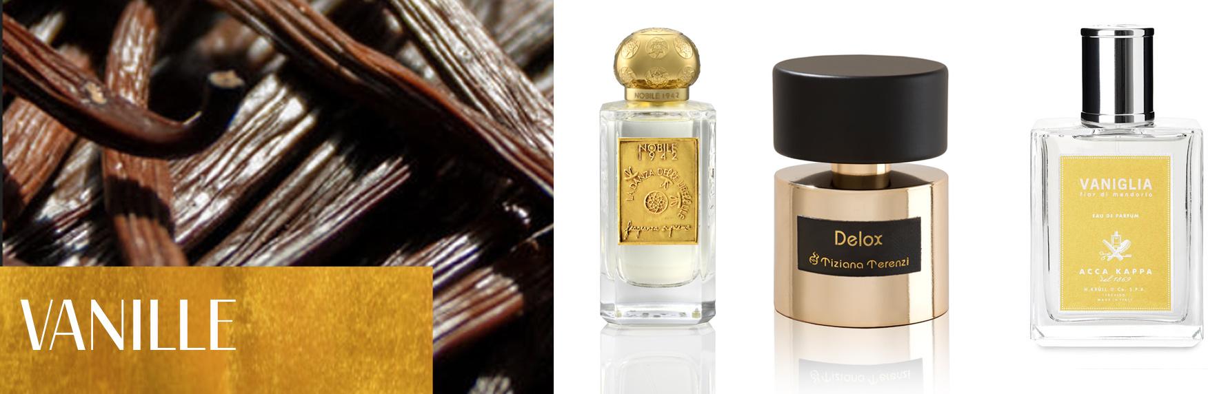 Perfume Ingredients: Vanilla
