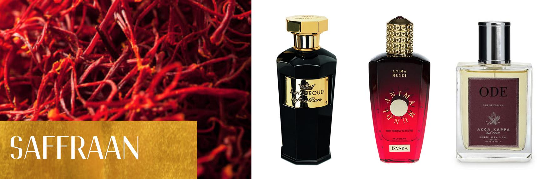Perfume Ingredients: Saffron