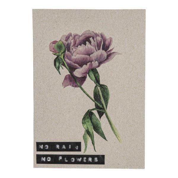 Postcard recycled flower 'no rain no flowers'-1