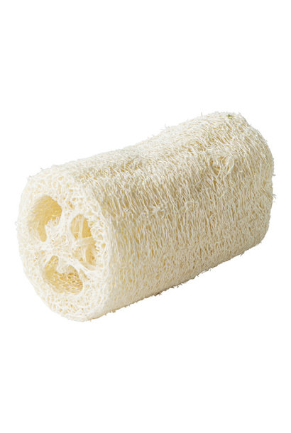 Scrub sponge loofah
