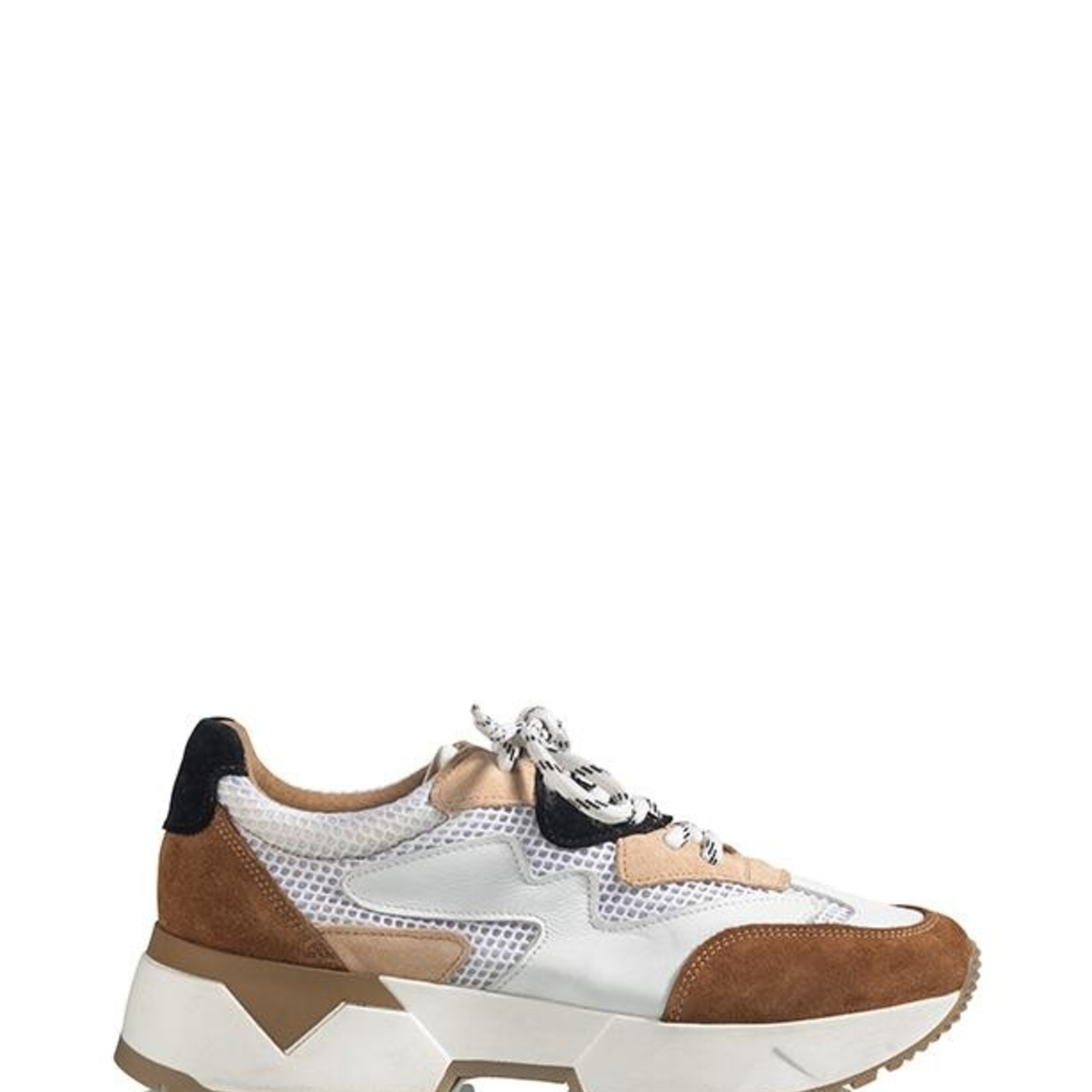 DWRS BRISBANE, sneaker