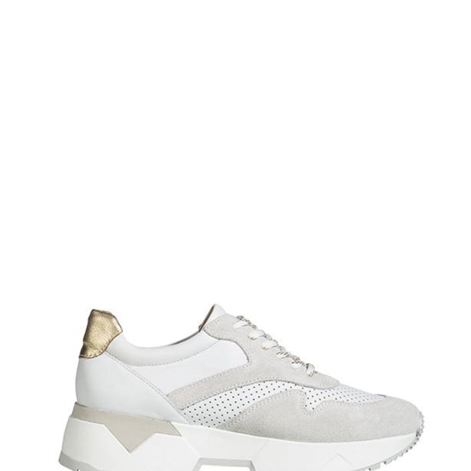 DWRS SYDNEY, sneaker