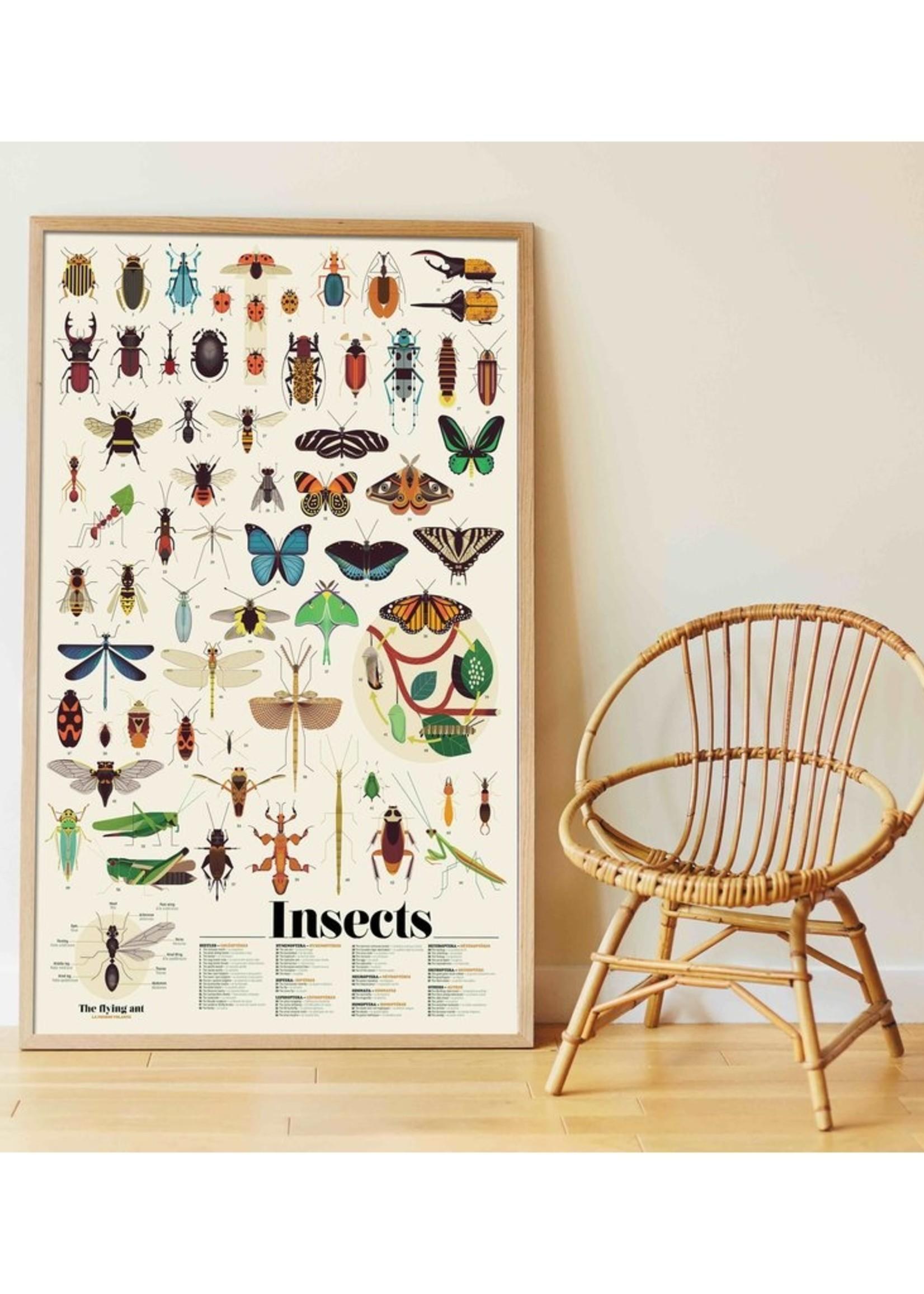 Poppik Stickerposter - Insekten