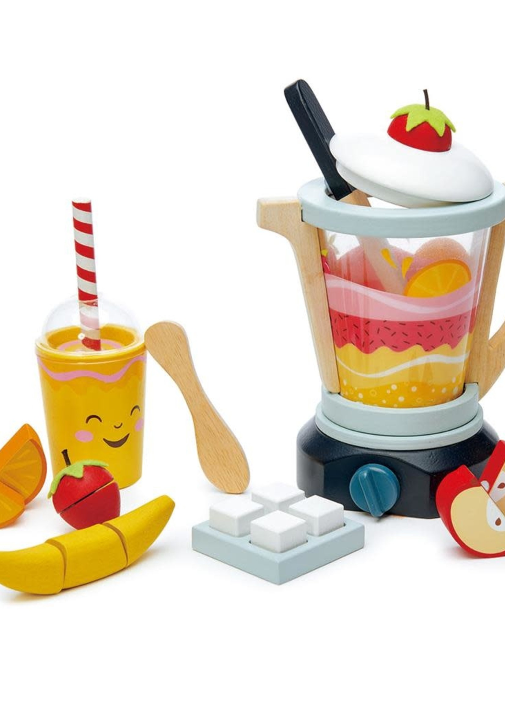 Tender Leaf Toys Blender met fruit