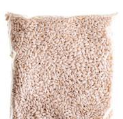 Inoue Honten Dried kōji rice