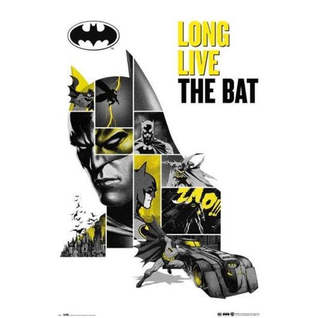 DC COMICS BATMAN 80 ANNIVERSARY