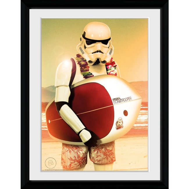 Stormtrooper with Surfboard