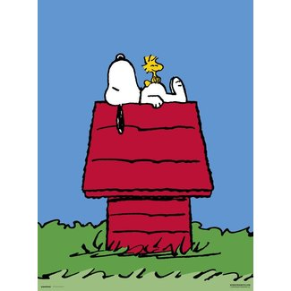 SNOOPY HOME