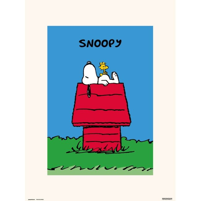SNOOPY DOGHOUSE