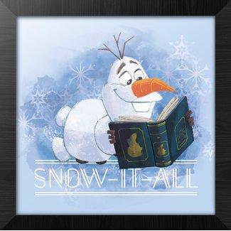 FROZEN SNOW IT ALL