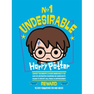 HARRY POTTER N§1 UNDESIRABLE