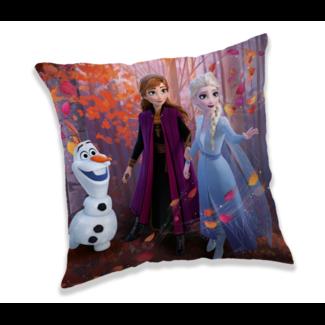 """Frozen 2 """"Forest"""" cushion"""