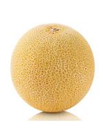 Galia Meloen stuk