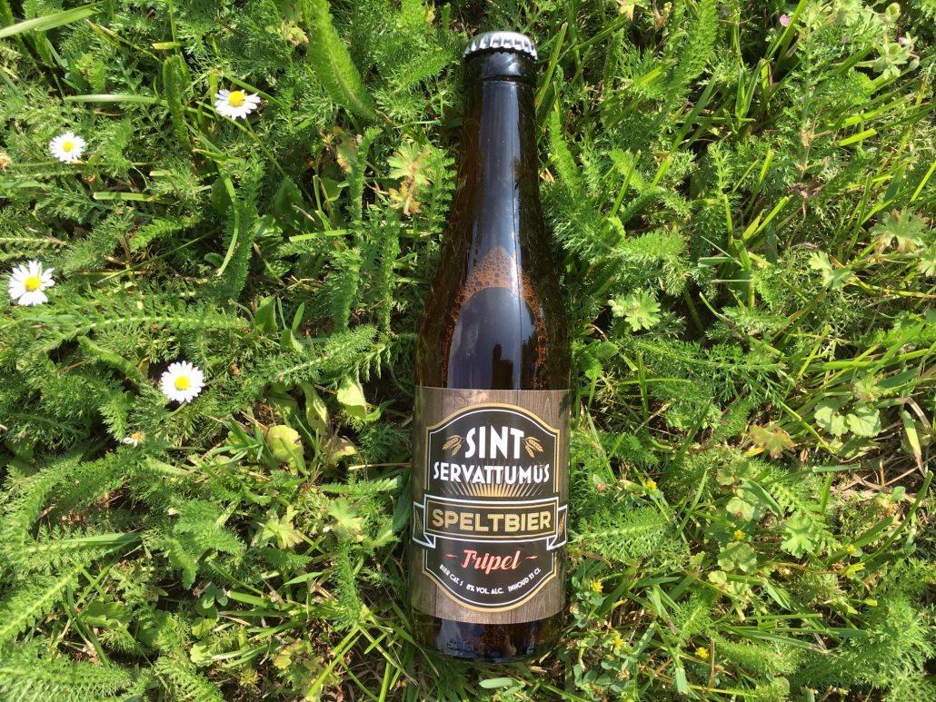 Tripel Speltbier Herkomst: Schijndel, Nederland Een Tripel bier gemaakt van spelt. De kleur lijkt op troebele appelsap. De smaak en geur worden bepaald door banaan en peer. Peer voornamelijk in de geur. Daarnaast is het bier vol en romig en heeft een aangename afdronk. Tripel Speltbier is afkomstig van Sint Servattumus uit Schijndel. Behalve bierbrouwen kun je op deze locatie ook terecht voor workshops en bierproeverijen. De brouwers zijn in 1992 begonnen in de keuken en hebben sinds 2000 een eigen locatie. Het bier bevat een alcoholpercentage van 8%. Advies serveertemperatuur: 6 tot 9 graden.