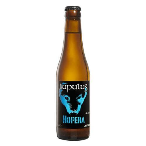LUPULUS HOPERA 33CL-1
