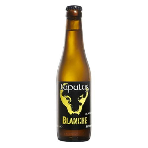 LUPULUS BLANCHE 33CL-1