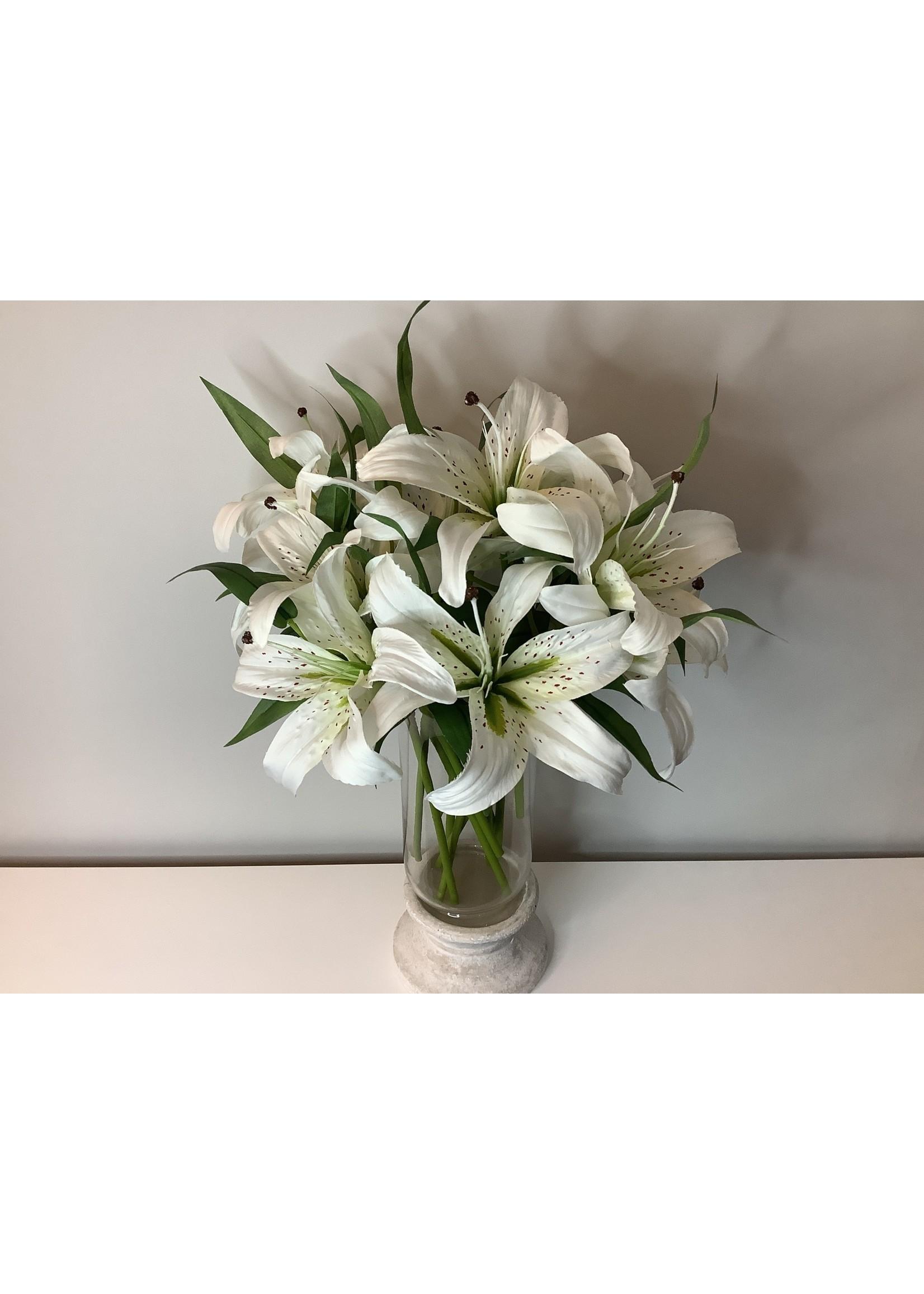 Short Casablanca Lily 38cm