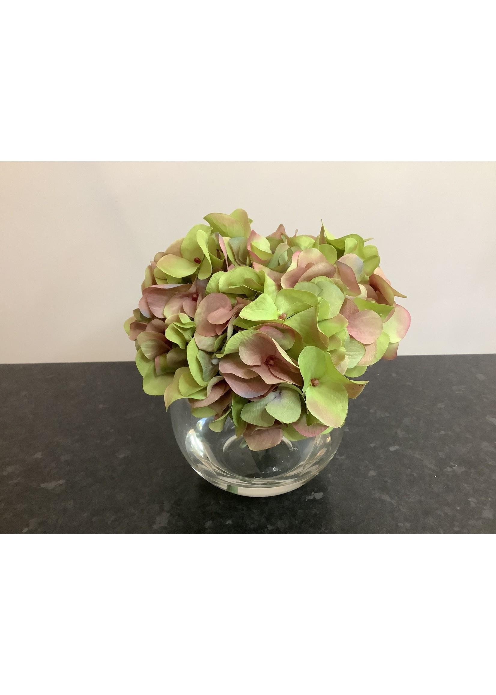 Hydrangea in glass vase 16x24cm