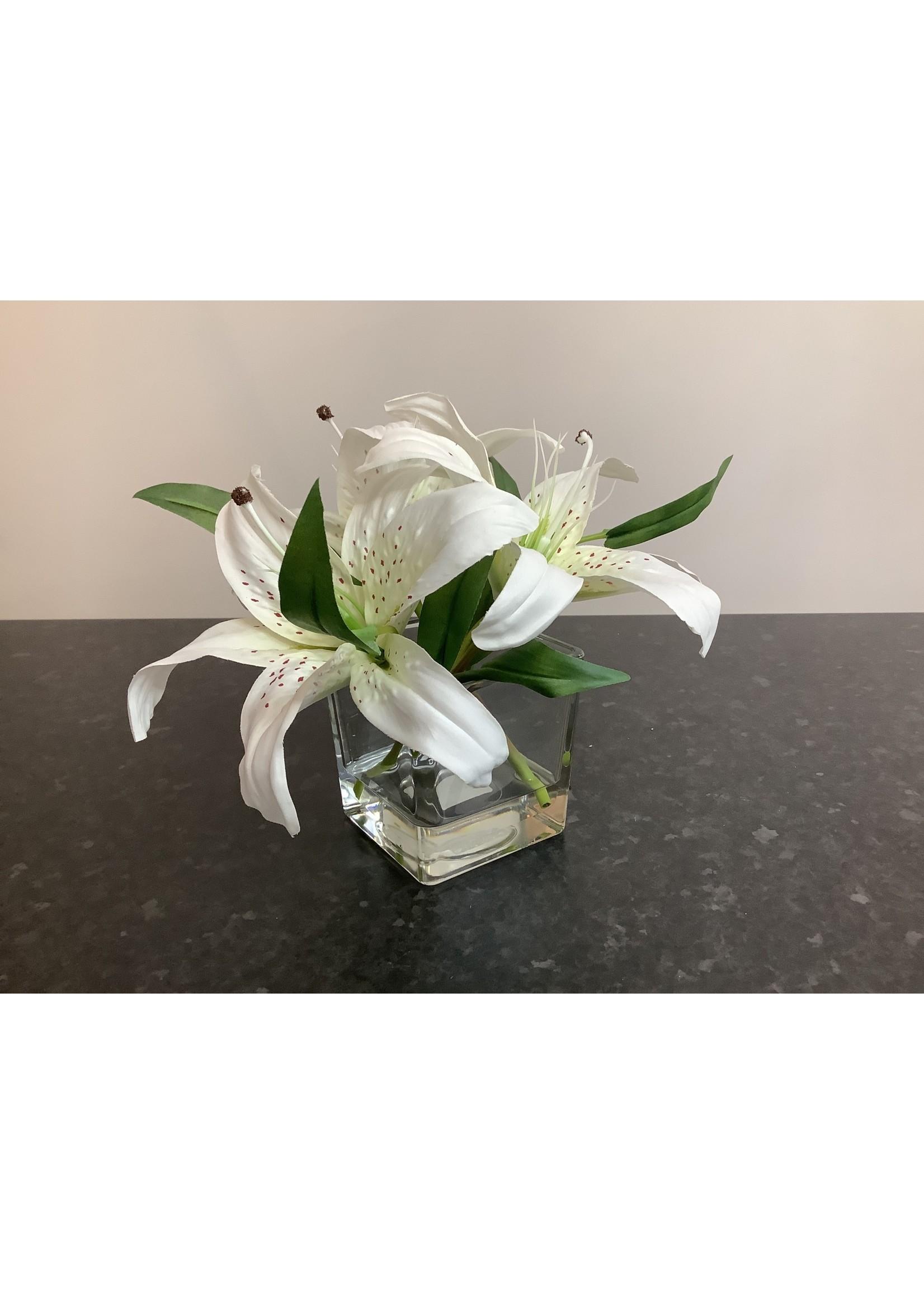 Lily's in cube vase 10x10cm