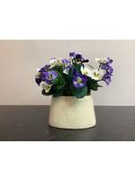 Pansies in Ceramic Pot Purple 16x20cm