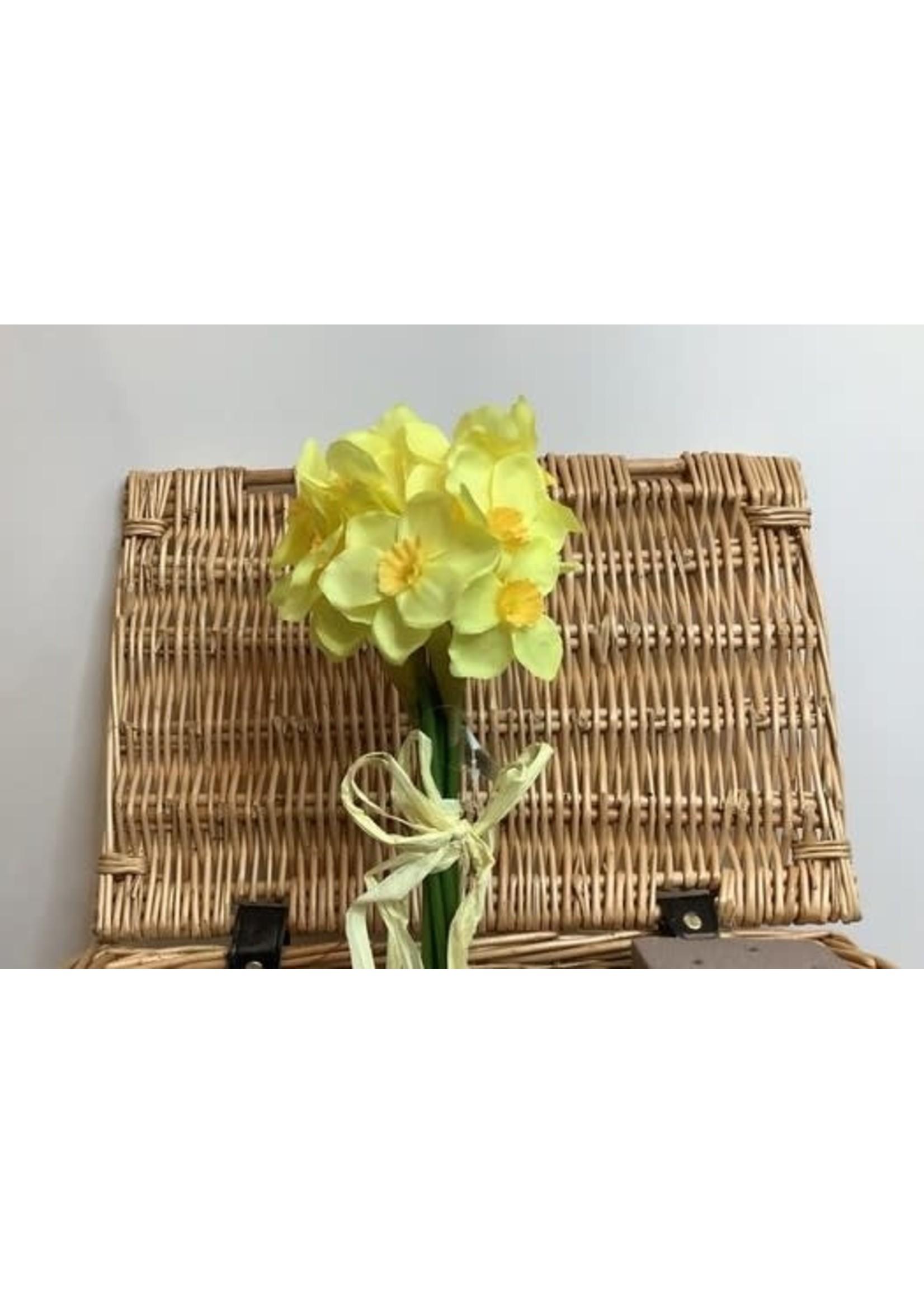 Daffodil Bundle 27cm