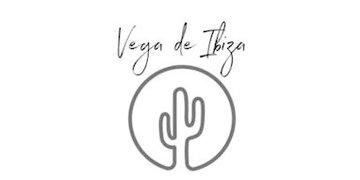 Vega Basics