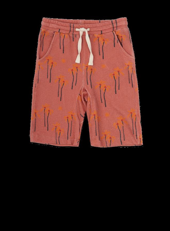 Shorts palm-tree