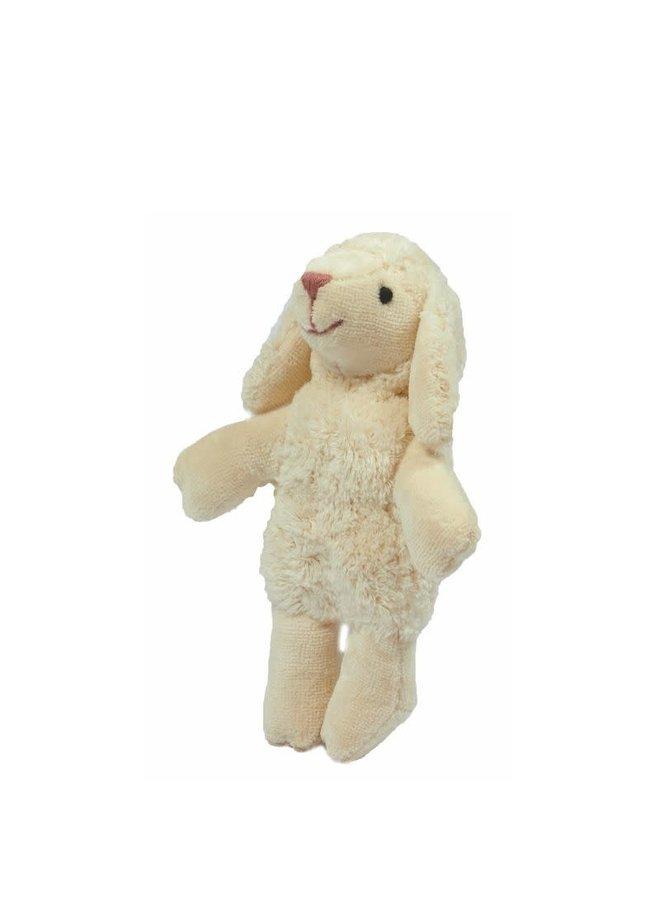 Animal Baby Sheep