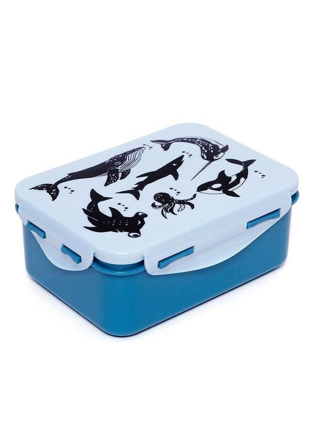 Lunchbox sea animals