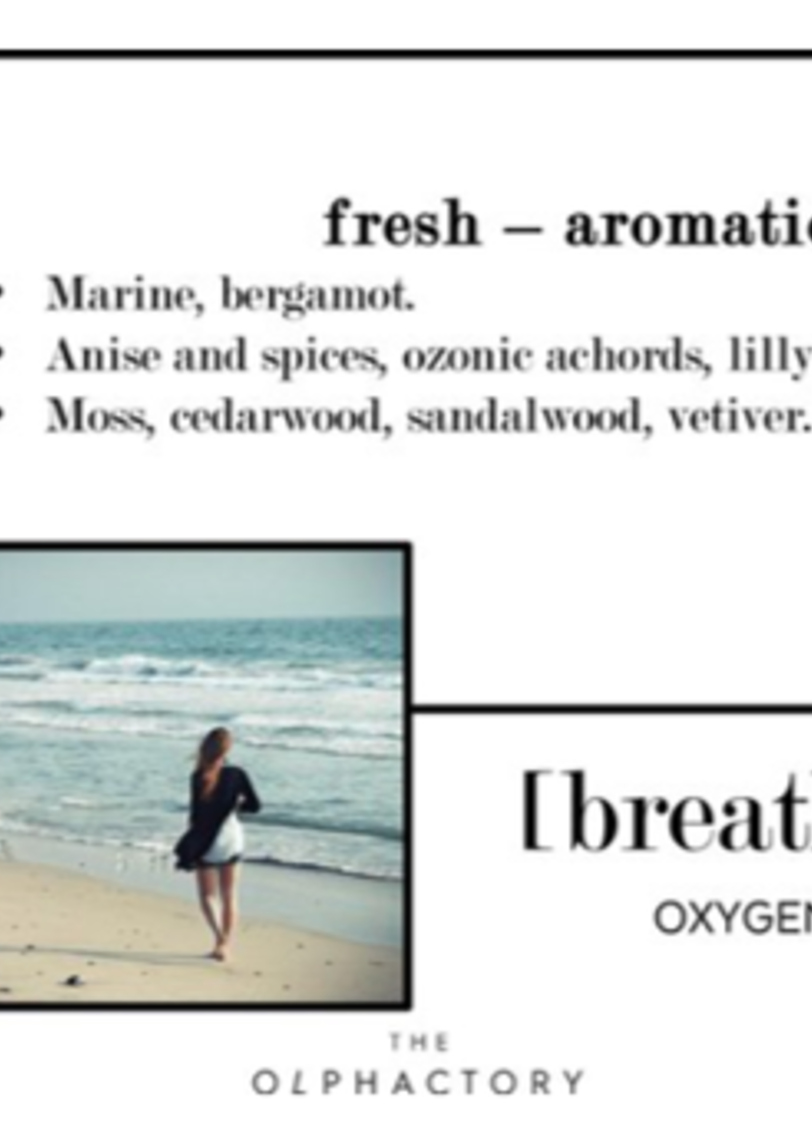 The Olphactory The Olphactory luxe geurkaars Breathe Oxygen