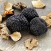 Truffle Love