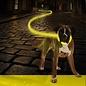 Duvo+ Flash light ring usb nylon Geel 65 cm